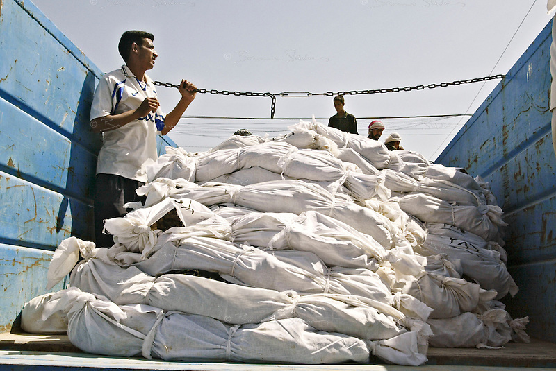 Moussayib, Iraq, May 24, 2003.Bodies from people missing since their arrest by Hussein Kamal, Saddam's son-in-law and his men, in March 1991 were found in mass-graves in Djur Al Saher and are brought in trucks to a theater hall in Moussayib to allow identification by the families. .