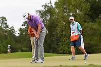 Sebastian Cappelen (DEN) watches his putt on 10 during round 4 of the 2019 Houston Open, Golf Club of Houston, Houston, Texas, USA. 10/13/2019.<br /> Picture Ken Murray / Golffile.ie<br /> <br /> All photo usage must carry mandatory copyright credit (© Golffile | Ken Murray)