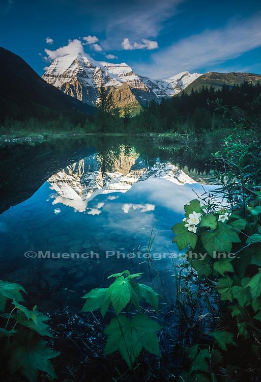 Mt Robson Provincial Park,Canada BC