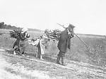 Russland: 'Arme russische Einwohner holen Holz aus dem Walde.' (Originaltext) - undatiert, vermutlich um 1910er Jahre Originalaufnahme im Archiv von ullstein bild<br /> <br /> - 01.01.1910-31.12.1910<br /> <br /> Es obliegt dem Nutzer zu pr&uuml;fen, ob Rechte Dritter an den Bildinhalten der beabsichtigten Nutzung des Bildmaterials entgegen stehen.<br /> <br /> Russia: poor people get firewood from the forest - probably in the 1910s Vintage property of ullstein bild<br /> <br /> - 01.01.1910-31.12.1910<br /> <br /> It is in the duty of the user of the image to clear prior to usage if any Third Party rights preclude the intended use.