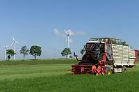 POLAND, Rusiec, herb and spices cultivation and trade, harvest of dill weed by machine, behind Vestas windmill / POLEN, Rusiec, Firma Bromex, Vertragsanbau und Handel von Kräutern und Gewuerzen, Dill Ernte