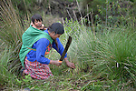 Silvia Hernandez cuts grass to be used to cover a shared vegetable garden in San Luis, a small Mam-speaking Maya village in Comitancillo, Guatemala. Women in the community have worked together on several agricultural and animal raising projects with help from the Maya Mam Association for Investigation and Development (AMMID). On Hernandez' back is her 1-year old son Marcos Antonio.