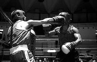 Roma .Palazzetto dello Sport.Boxe dilettanti.