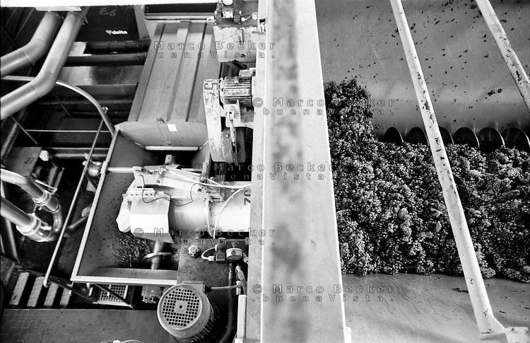 Cantina sociale a Santa Maria della Versa (Pavia). Lavorazione dell'uva --- Winery in Santa Maria della Versa (Pavia). Processing of grapes