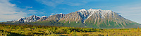 Panorama of St. Elias Mountains<br /> Kluane National Park<br /> Yukon<br /> Canada