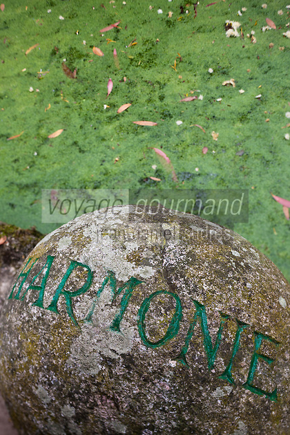 Europe/France/Normandie/Basse-Normandie/50/Manche/Presqu'île de la Hague/ Vauville: Jardin botanique du château de Vauville - Le jardin botanique de Vauville également appelé Jardin du Voyageur, abrite plus de 1 000 espèces de plantes de l'hémisphère austral. Le jardin a été classé Jardin remarquable en 2004. [Non destiné à un usage publicitaire - Not intended for an advertising use]