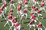 Wisconsin Badgers Head Strength and Conditioning Coach Ross Kolodziej, center, leads the team in stretching prior to  an NCAA College Football game against the Florida Atlantic Owls Saturday, September 9, 2017, in Madison, Wis. The Badgers won 31-14. (Photo by David Stluka)