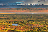 Small tundra pond and the McKinley river bar in autumn evening light, Denali National Park, Alaska.