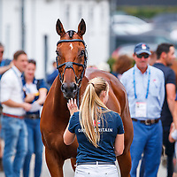 GBR-Imogen Murray presents Ivar Goodin during the SAP Cup CICO4*-S Nations' Cup Eventing 1st Horse Inspection. 2019 GER-CHIO Aachen Weltfest des Pferdesports. Thursday 18 July. Copyright Photo: Libby Law Photography