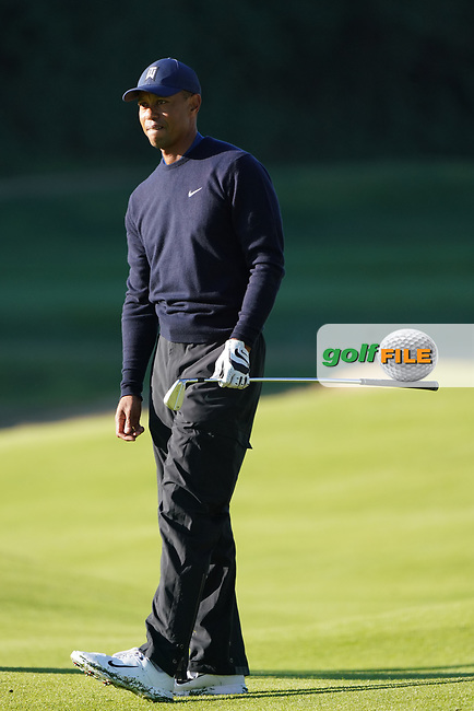 Tiger Woods (USA) during the Pro-Am ahead of the The Genesis Invitational, Riviera Country Club, Pacific Palisades, Los Angeles, USA. 11/02/2020<br /> Picture: Golffile | Phil Inglis<br /> <br /> <br /> All photo usage must carry mandatory copyright credit (© Golffile | Phil Inglis)