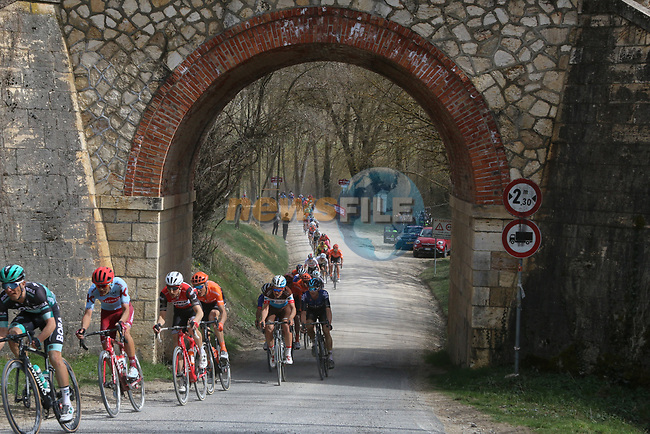 The peloton on sector 5 Lucignano d'Asso during Strade Bianche 2019 running 184km from Siena to Siena, held over the white gravel roads of Tuscany, Italy. 9th March 2019.<br /> Picture: Seamus Yore | Cyclefile<br /> <br /> <br /> All photos usage must carry mandatory copyright credit (© Cyclefile | Seamus Yore)