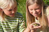 Kinder beobachten Teichfrosch, mit Frosch auf der Hand, Teich-Frosch, Grünfrosch, Frosch, Frösche, Pelophylax esculentus, Rana kl. esculenta, European edible frog