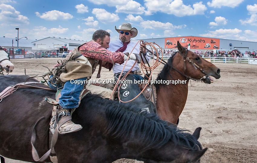 RAM Rodeo Tour Orangeville, Ontario, Canada<br /> 18 &amp; 19 June, 2016<br /> photos by Norm Betts<br /> normbetts@canadianphotographer.com<br /> 416 460 8743