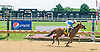 Celtic Moon winning at Delaware Park on 7/24/17