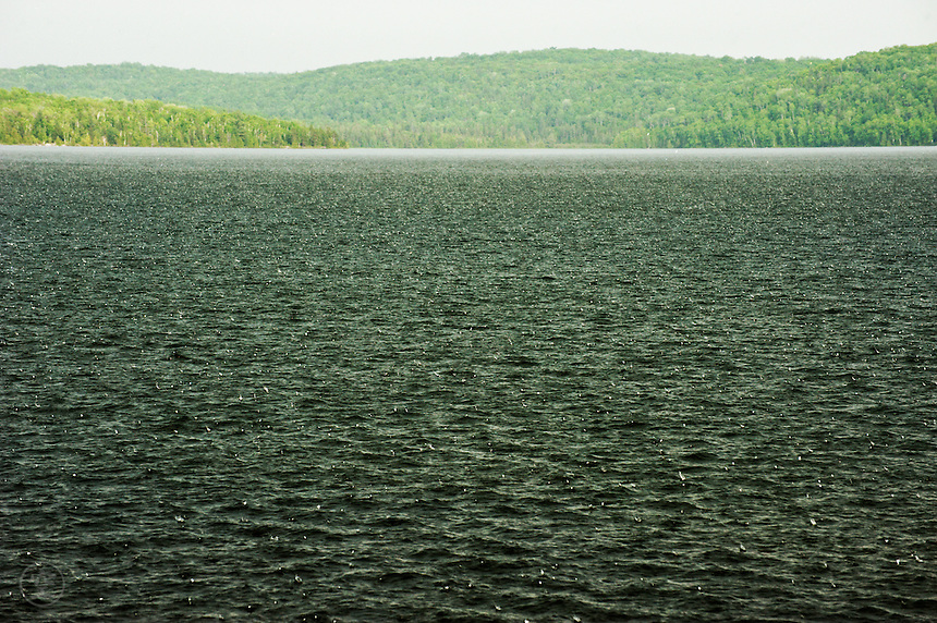 Rain beats on the surface of Semiwite Lake, Mississagi Provincial Park, Ontario.