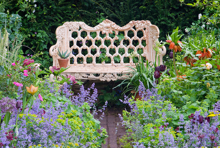 Garden bench in lush flower garden with purple Lupinus lupines, iris, peonies paeonia, etc