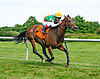 Sanctifiza winning at Delaware Park on 7/2/16