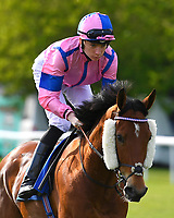 N Over J ridden by Callum Shepherd goes down to the start of The Penang Turf Club Malaysia Handicap (Class 5)   during Afternoon Racing at Salisbury Racecourse on 17th May 2018