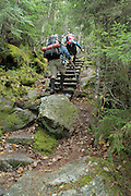 Two hikers climb up a wooden ladder on the Hincks Trail in the White Mountain National Forest of New Hampshire USA.