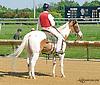Lance at Delaware Park on 8/3/15