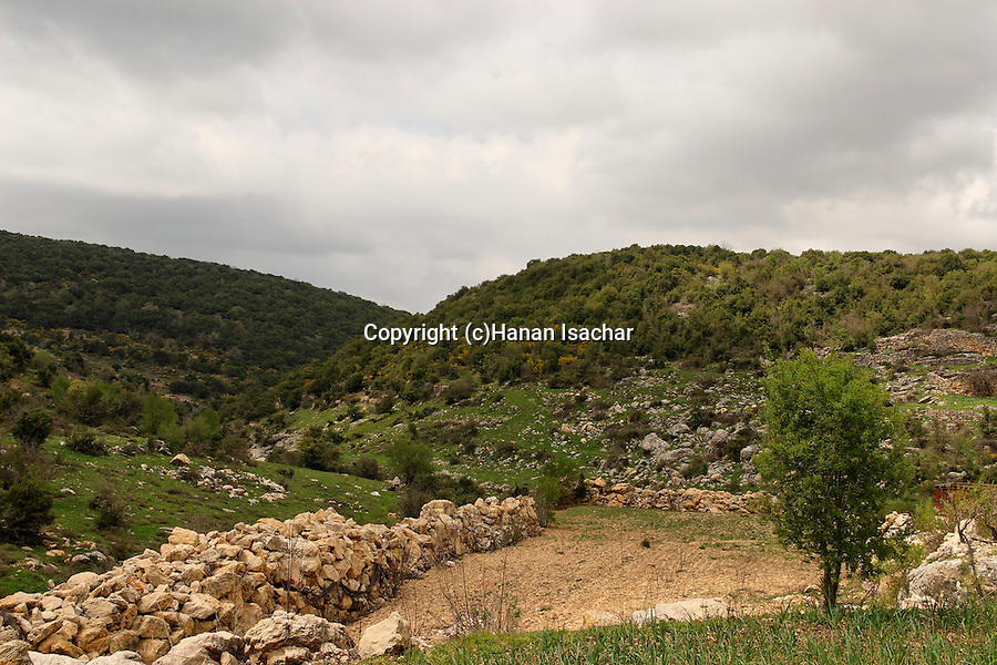 Israel, Upper Galilee. The road between the Druze villages Horpish and Beth Jan