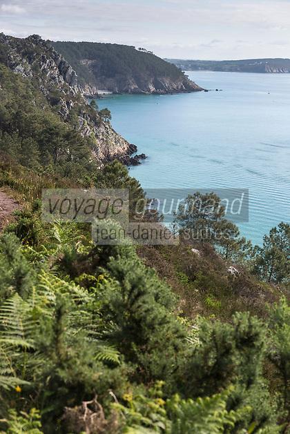 France, Bretagne, (29), Finistère, Presqu'île de Crozon, Crozon, Morgat:  Le GR 34 au niveau de l'Ile viege, vers Morgat