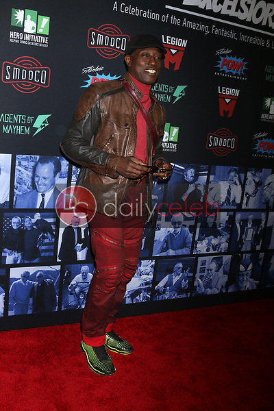 "Wesley Snipes<br /> at ""Excelsior! A Celebration of the Amazing, Fantastic, Incredible & Uncanny Life of Stan Lee,"" TCL Chinese Theater, Hollywood, CA 01-30-19<br /> David Edwards/DailyCeleb.com 818-249-4998"