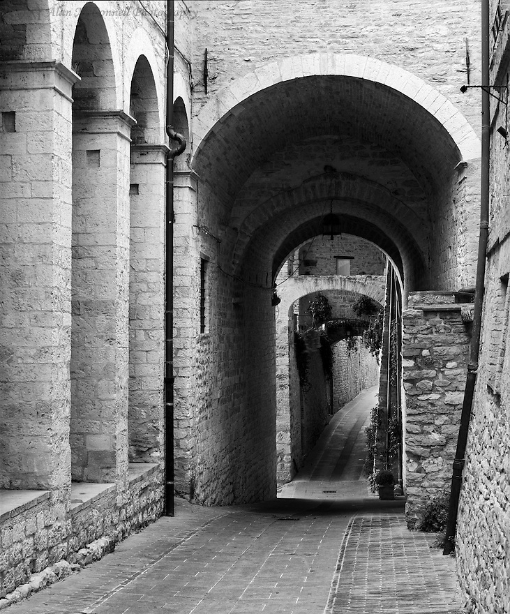 """Assisi Alley""<br />