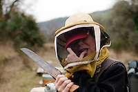 Beekeeper Amanda Dowd tastes honey fresh from a beehive, Pont du Loup, Alpes Maritimes, France, 18 February 2014. Amanda has started a project called 'Beebe Freed', a bee rescue project to protect the honey bee by informing people about the insects and risks they face today.