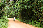 African Golden Cat (Caracal aurata aurata) researcher, David Mills, riding motorbike through rainforest, Kibale National Park, western Uganda