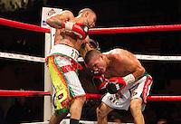 Boxing 2010-04