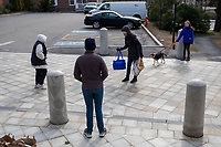 While maintaining social distancing protocols, a woman drops off bags of food on the street outside Town Hall for distribution to families in need by the Belmont Food Pantry in Belmont, Massachusetts, on Sat., March 21, 2020. As part of the response to the ongoing Coronavirus (COVID-19) global pandemic, the Belmont Food Pantry arranged for curbside pickup to minimize person-to-person contact. Each pair of bags included a variety of nonperishable food, including some canned meats, and toilet paper and paper towels. The Food Pantry usually purchases food directly from grocers and food providers for distribution, but because of ongoing shortages, the Food Pantry received donations from the Greater Boston Food Bank in order to keep up with ongoing food distribution.