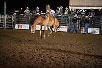 Yuma Co Rodeo