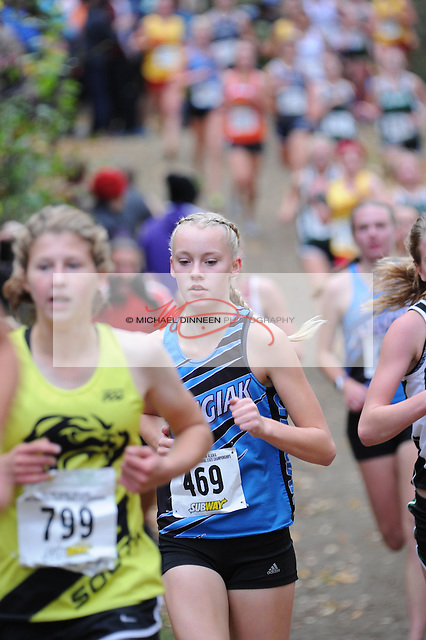 Chugiak's Adrianna Proffitt runs to a 17 th -place finish at the Alaska State Cross-Country Championshps Saturday, Oct. 1, 2016,  She ran a 19:49.  Photo for the Star by  Michael Dinneen