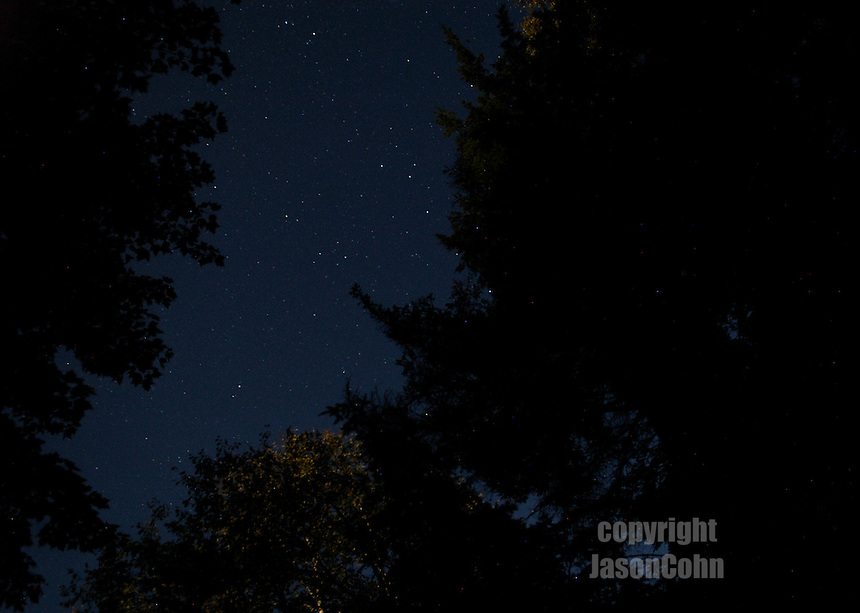 A starlit sky in the Adirondacks. Photo by Jason Cohn