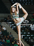 North Texas Mean Green cheerleaders in action during the NCAA  basketball game between the St. Gregory Cavilers and the University of North Texas Mean Green at the North Texas Coliseum,the Super Pit, in Denton, Texas. UNT defeated St. Gregory's 81 to 52...