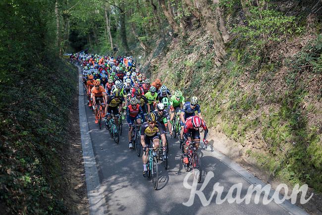 peloton up the 'Hagaard'<br /> <br /> 57th Brabantse Pijl - La Fl&egrave;che Braban&ccedil;onne (1.HC)<br /> 1 Day Race: Leuven &rsaquo; Overijse (197km)
