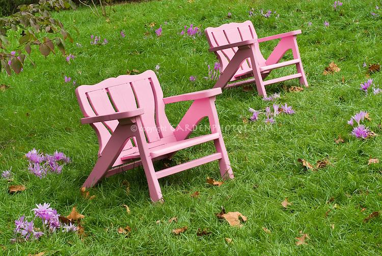 Two chairs garden furniture - Chanticleer + Colchicum in autumn