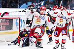 Stockholm 2013-12-28 Ishockey Hockeyallsvenskan Djurg&aring;rdens IF - Almtuna IS :  <br /> Almtuna Daniel Hermansson har kvitterat till 1-1 i den andra perioden och jublar<br /> (Foto: Kenta J&ouml;nsson) Nyckelord:  jubel gl&auml;dje lycka glad happy