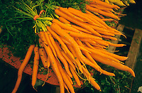 FRUITS-VEGETABLES<br />