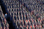 A man walks through a field of American flags placed near the Pentagon to memorialize the victims, in Arlington, Virginia, USA, 11 September 2008.