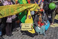Vegetarian Pride on display