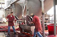 emptying fermentation tanks roquevale alentejo portugal