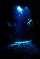 SUNBEAM IN CAVE AT DEVIL'S GROTTO<br /> Tyndall Effect<br /> Underwater shot showing Tyndall Effect in water, the scattering of light by colloidal particles or particles in suspension. Tarpon is visible to left of light beam.