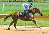 Purim's Gold winning at Delaware Park on 7/14/16