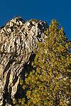 Granite peaks in Kings Canyon National Park, California