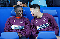 (L-R) Barrie McKay and Courtney Baker-Richardson of Swansea City during the Sky Bet Championship match between Sheffield Wednesday and Swansea City at Hillsborough Stadium, Sheffield, England, UK. Saturday 23 February 2019