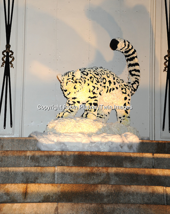 The Snow Leopard display