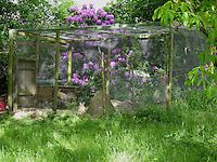 Voliere, Zwergkaninchen, Zwerg-Kaninchen, geräumige Außenvoliere, Gehege für artgerechte Tierhaltung im Garten