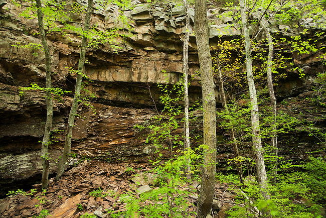 Spring comes to Saint Mary's Wilderness Area